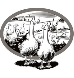Oval frame with rural landscape and geese vector
