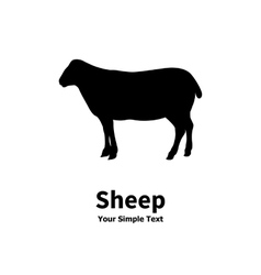 Pet sheep vector