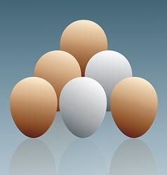 The Eggs vector