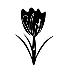 flower spring natural decoration pictogram vector image vector image