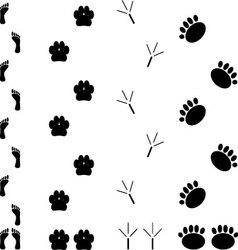 Foot print set vector image