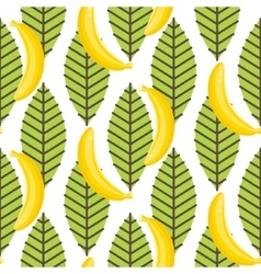 Banana fruit with leaves seamless pattern vector image