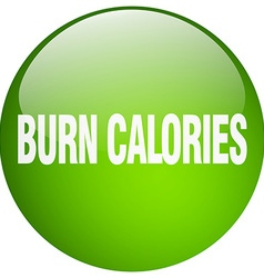 Burn calories green round gel isolated push button vector