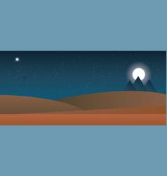 Landscape of the desert night vector