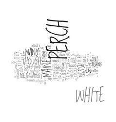 White perch text word cloud concept vector