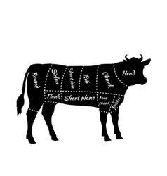 Scheme of Beef Cuts for Steak and Roast vector image