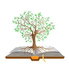 book tree vector image vector image