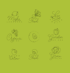 fruits and vegetables pen line symbols green vector image vector image