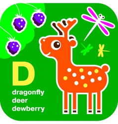ABC dragonfly deer dewberry vector image