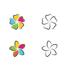 beauty plumeria flowers design vector image