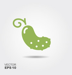 cucumber flat icon with shadow vector image