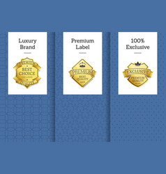 Luxury brand premium label exclusive set leaflets vector