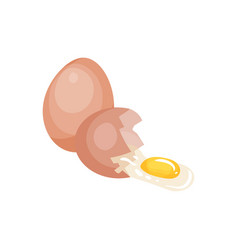 Whole and broken raw egg with yellow yolk organic vector