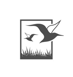 albatross bird graphic design template vector image
