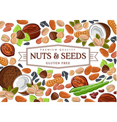 Gluten free nuts cereals beans vector