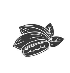 Pecan nuts glyph icon vector