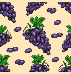 Seamless pattern with grape design element vector