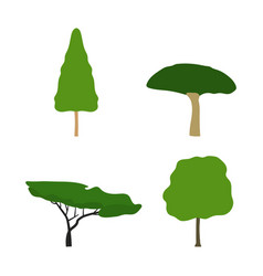 set trees flat design vector image