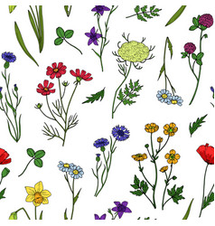 Wild flowers seamless pattern floral wildflower vector