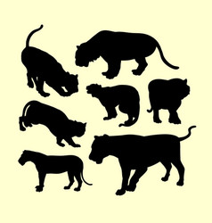 panther puma and tiger animal silhouette vector image