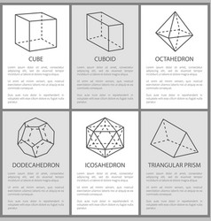 cube cuboid octahedron dodecahedron icosahedron vector image