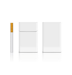 Front and back view of flip-top cigarette pack vector