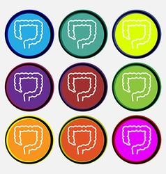 Large intestine icon sign Nine multi colored round vector