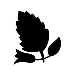 melissa vector image