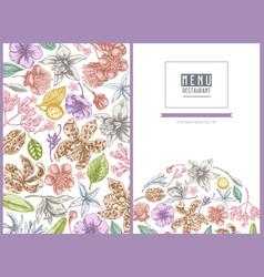 menu cover floral design with pastel laelia vector image