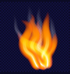 night fire concept background realistic style vector image