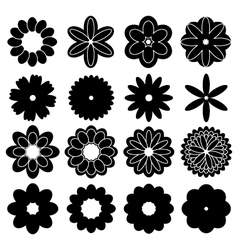 silhouettes flowers vector image