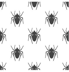 spider seamless pattern vector image