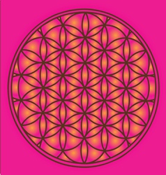 Sacred Geometry flower of life symbol vector image