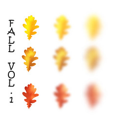 falling realistic oak leaves set with blured vector image vector image