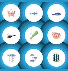 Flat icon sea set of medusa fish tuna and other vector