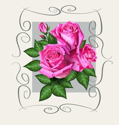 Roses vintage copy vector image