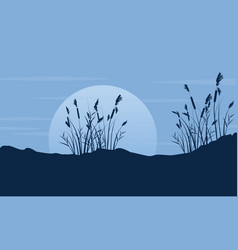 Silhouette of coarse grass with moon scenery vector