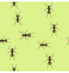 Trails Of Ants vector image