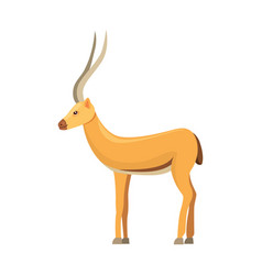 antelope isolated on white background african vector image