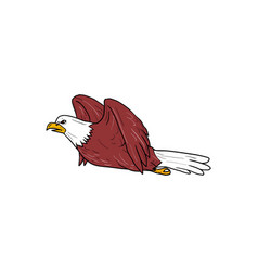 bald eagle flying cartoon vector image