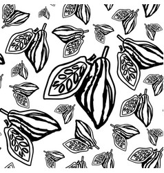 cocoa beans pattern on white background vector image