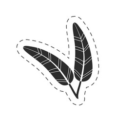 Drawing feathers decorative thin line vector