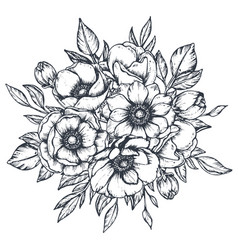 Floral composition hand drawn anemone vector