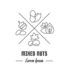Line banner mixed nuts vector