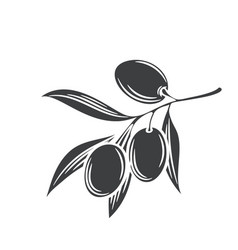 olives glyph icon badge vector image