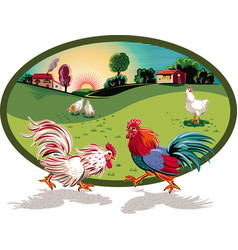 Oval frame with hens and two roosters fighting vector