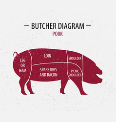 cut of pork poster butcher diagram vector image