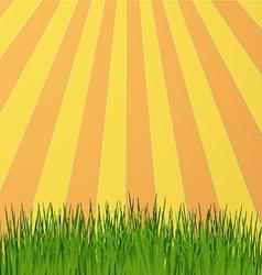 Sun rays green vector image