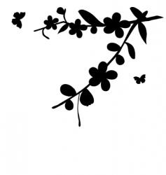 cherry flowers vector image vector image