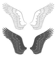 set of black and white with wings vector image vector image
